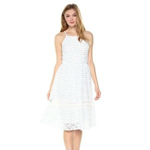 J by JOA White Blue Floral Lace Stripe Flare Dress